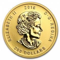 """Золотая монета Канады """"Рычащий Гризли"""" 200 долларов 2016 год 31.1 грамм"""